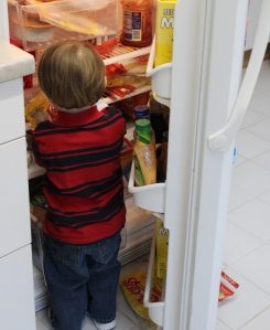 toddler in the fridge